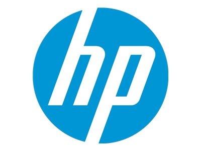 HP Maus - optisch - kabelgebunden - USB